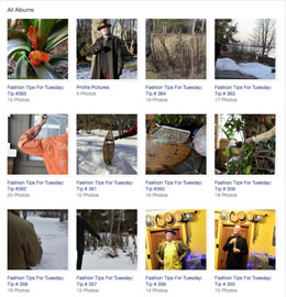 Image of Facebook Albums page